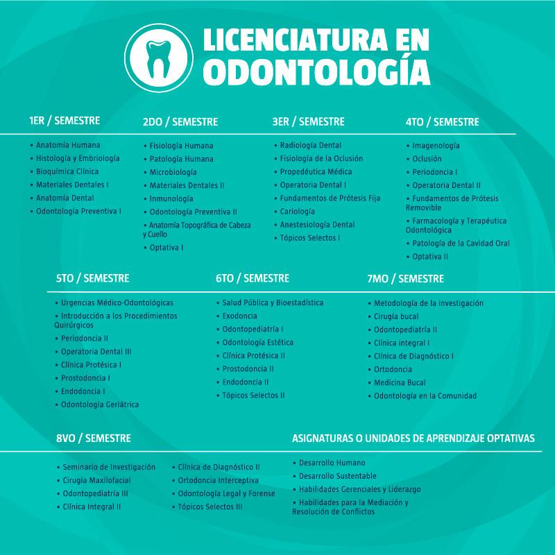 Licenciatura en Odontología